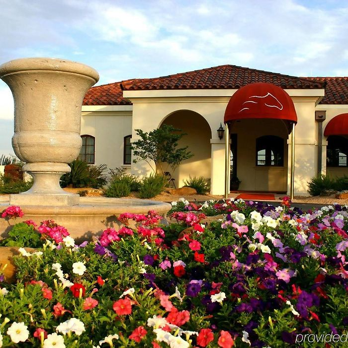 Newport Bluffs Apartments: Texas Hotels & Apartments, All Accommodations In Texas